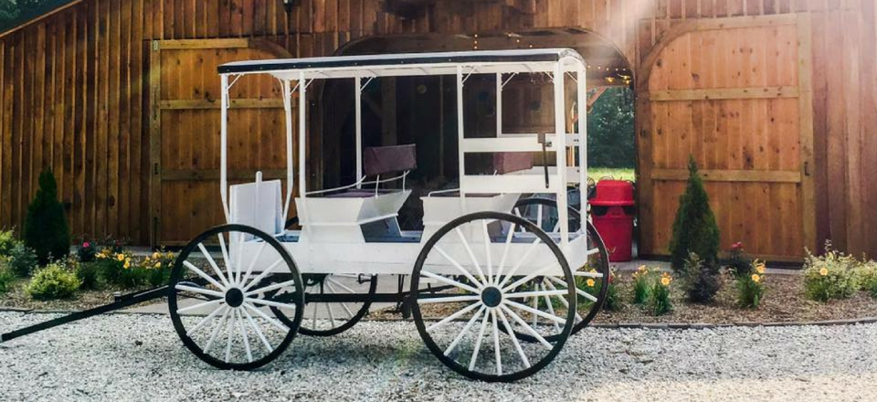 Our wedding carriage offers wonderful photo opportunities and it is included in your package!